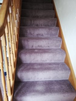 staircase 6 - carpet: Smart Strand - color: lilac